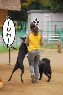 ボール遊びがしたいでち(6)