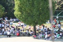 2008_10_04_43.jpg