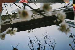 2009_03_12_009.jpg