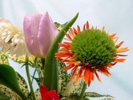 春のアレンジ2