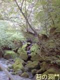 090815苔の洞門