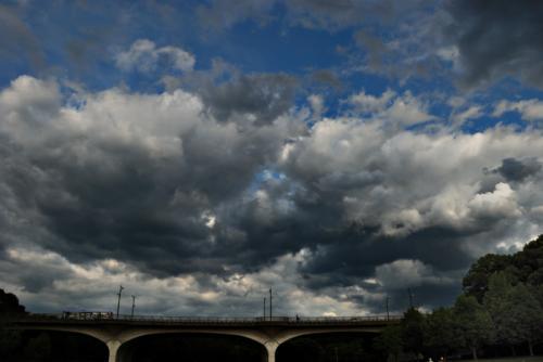 DSC_0009森の橋空