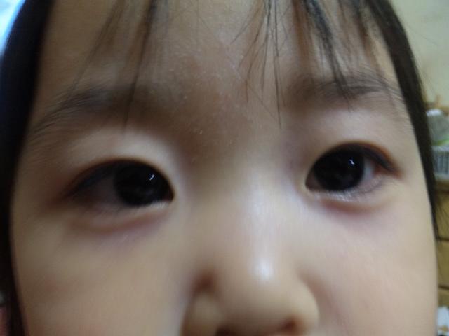 3_20100518002259.jpg