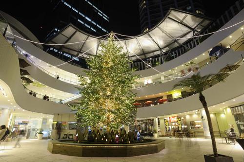 横浜ベイクォーター クリスマスツリー2010