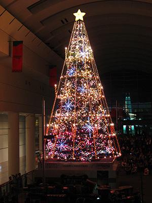 クイーンズスクエア横浜 シンギングツリー2011