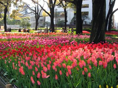 よこはま花と緑のスプリングフェア2010