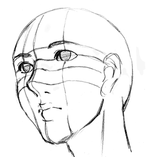 顔の立体図