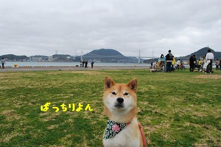 DSC_0018-2.jpg