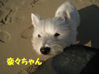 IMG_5072-2.jpg