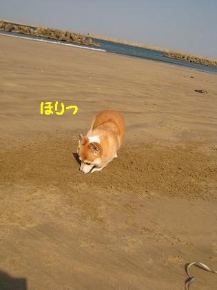 IMG_5100-2.jpg