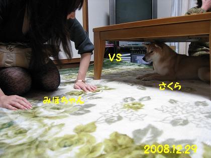 IMG_5202-2.jpg
