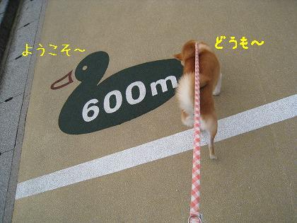 IMG_5505-2.jpg