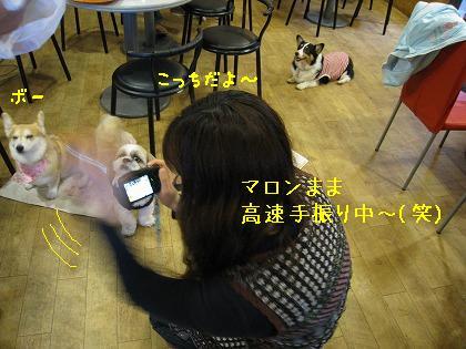 IMG_5939-2.jpg