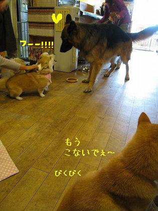 IMG_5964-2.jpg