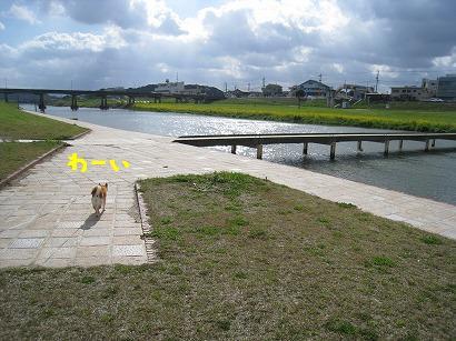 IMG_6446-2.jpg