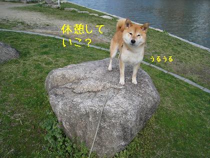 IMG_6686-2.jpg