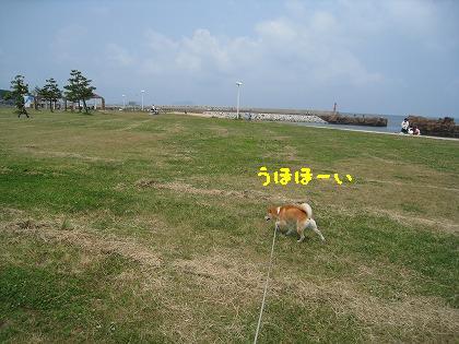 IMG_7723-2.jpg