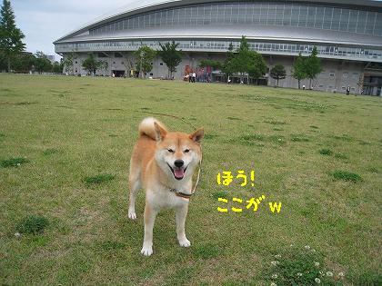 IMG_7849-2.jpg