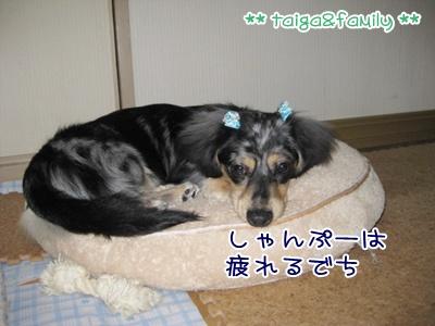 IMG_3651.jpg