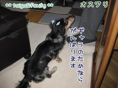 IMG_3665.jpg