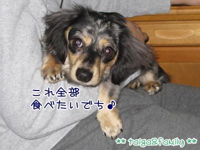 IMG_3823.jpg