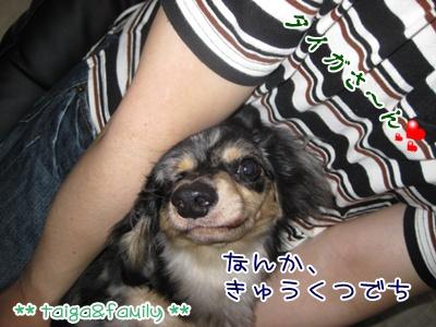 IMG_4158.jpg