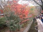 11.24 京都哲学の道