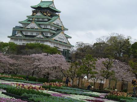 大阪城公園 花祭り