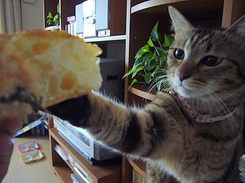 パンくれー
