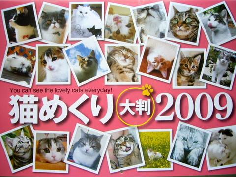 猫めくりカレンダー1