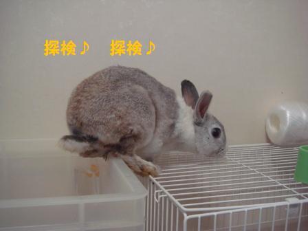 2009.7.12 小太郎 2