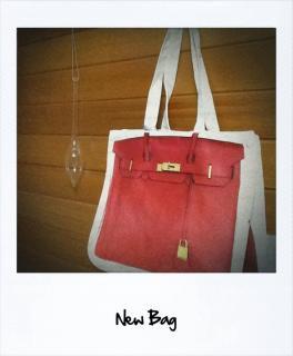 newbag_convert.jpg