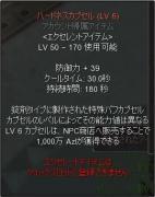 20100328本戦後