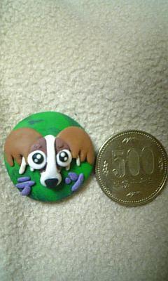 500円玉よりも少しデカイ!