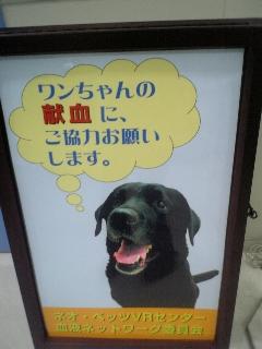 大型犬がいたら協力してね