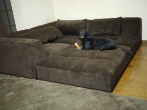 sofa-.jpg