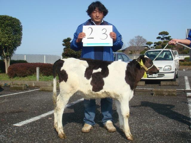 23 hanazawa