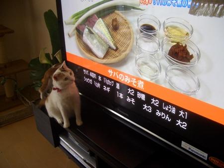 はなまるレシピ