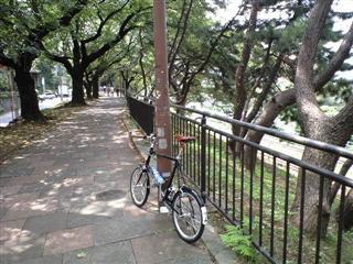四谷~飯田橋の土手。。。好きな場所です