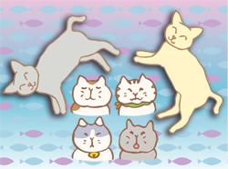 cat080222