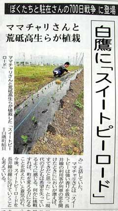 newspaper240.jpg