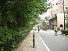 3.風の散歩道