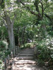 7・有栖川記念公園