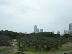 11.富士見山から