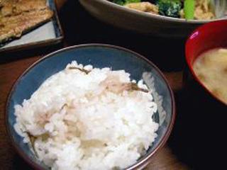 6.桜ご飯