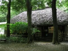 21.蘆花の家