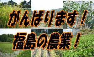 「里山ガーデンファームWebショップ」へGO!