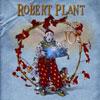 Band Of Joy / Robert Plant