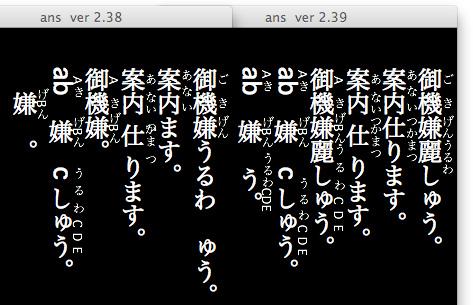 20110108an0.jpg