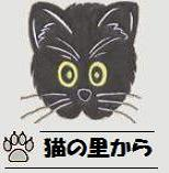 クロゥディオ(♂・黒猫)